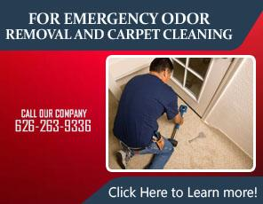 Our Services - Carpet Cleaning Azusa, CA